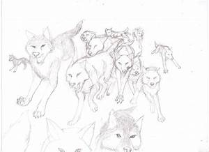 Wolf Pack Running Drawing