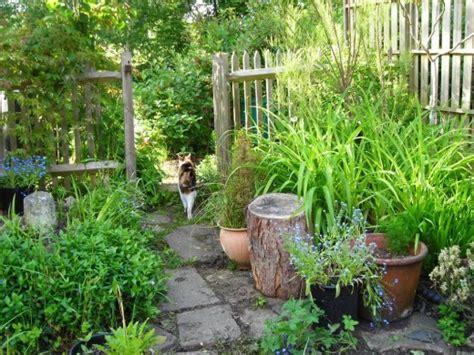 More Money Saving Gardening Tips Part Hubpages