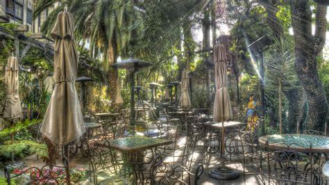 full hd wallpaper cafe forest palm desktop backgrounds hd