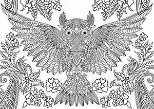 Abstract owl coloring pages for adults - ColoringStar