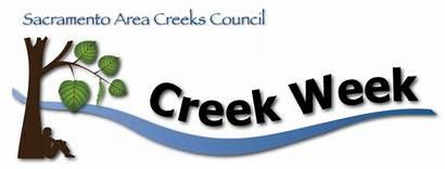 Creek Week Clean California Lawnless Sophisticated Sensible
