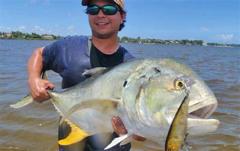jack crevalle florida catch hippos caranx recipes regulations