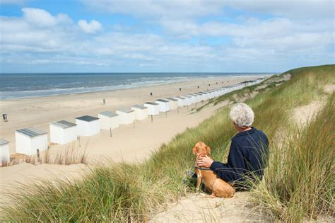 hundestraende  holland ferienhaus holland