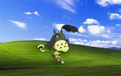 Totoro Wallpapers Backgrounds Anime Pixelstalk