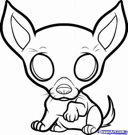 Chihuahua Coloring Drawing Draw Puppy Pages Step