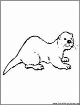Otter Coloring Pages Sea River Drawing Otters Printable Asian Clipart Activities Animals Cartoon Animal Colouring Zoo Preschool Genuardis Clip Library sketch template