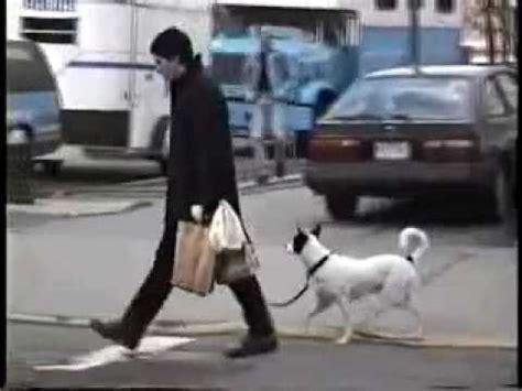 john kennedy jr walks home xclusive youtube