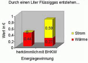 kosten flüssiggas pro liter wirtschaftlichkeitsberechnung