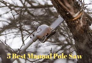 Top 5 Best Manual Pole Saw In 2020 And Reviews