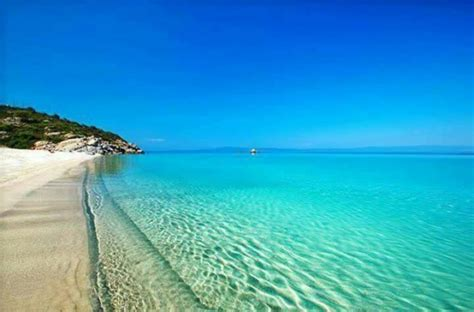 armenistis campng bungalows  chalkidiki firma