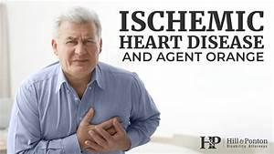 Ischemic Heart Disease And Agent Orange