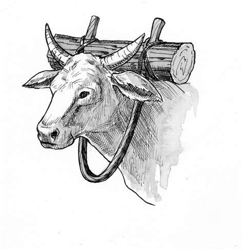 jeremiah  illustration yoke  oxen saint marys press
