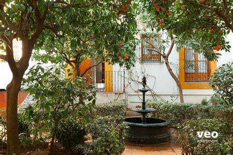 Seville Apartment Santa Cruz Square Seville Spain   Plaza