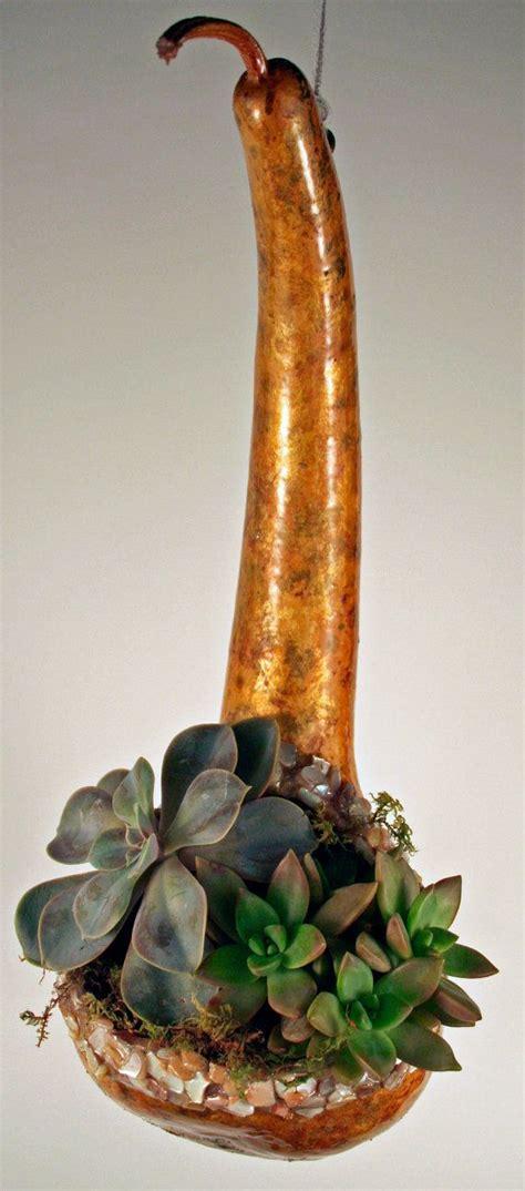dipper gourd succulent  cactus hanging planter