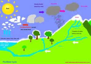 Water Cycle Diagram Worksheet