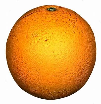 Orange Dayz Fresh Fb Gamepedia Raw General