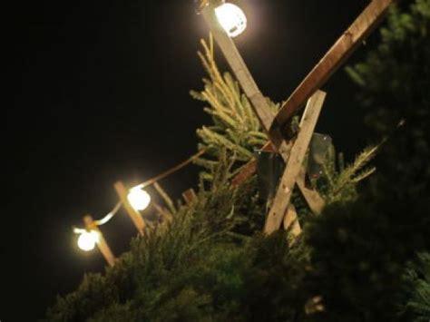 christmas tree alexandria va where to buy a christmas tree in alexandria va 3021