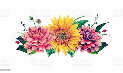 Bouquet Watercolor Clipart Vector Clip Flowers Sunflower