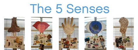 kindergarten and the five senses meri cherry 659 | the5senses4