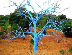 bright painting ideas for decorating trees creative backyard ideas