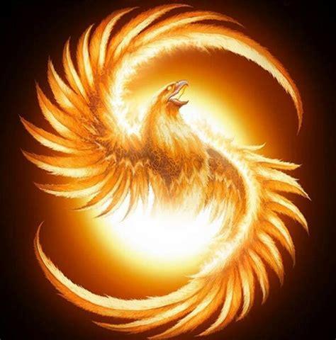 Phoenix Sun - Trypaint