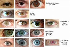 Why are black eyes rare in people?