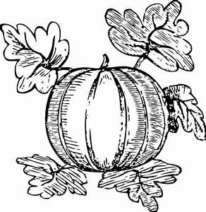 Melon Clip Art at Clker.com - vector clip art online ...