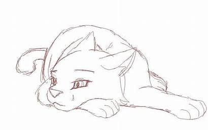 Cat Drawing Animation