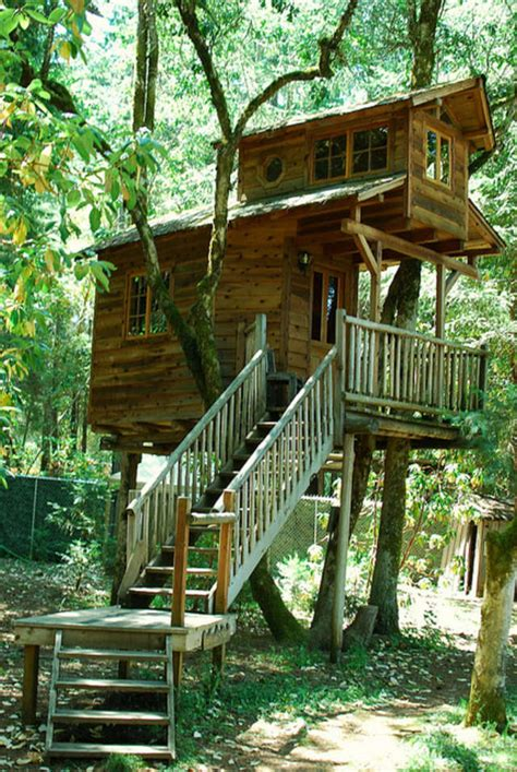 Treehouse Temptations The Seven Best Treehouse Hotels In