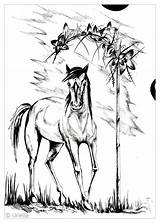 Coloring Horse Adult Pages Adults Animals Horses Nature Urielle Sacred Card Justcolor Artist Sauti Pata sketch template