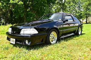Jennifer Awad's Street Driven 1990 Mustang GT Photo & Image Gallery