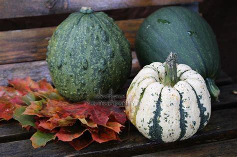 Herbstliche Deko Garten by Herbstliche Deko Im Garten Und Ein Wunderbarer