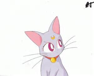 sailor moon cats gessekai sailor moon cats