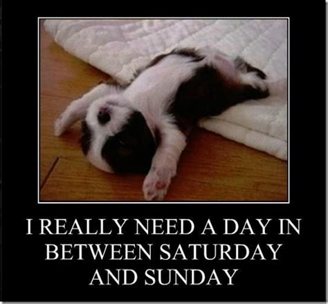 Funny Saturday Memes - really need a day in between saturday and sunday funlexia funny pictures