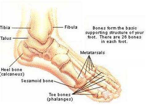 douleur al interieur du pied top 3 des astuces pour porter des chaussures 224 talons sans douleur le secret des fans de