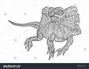 Hand Draw Of Frilled Lizard In Zentangle Style Stock ...