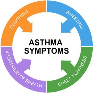 Asthma Symptoms Signs And Symptoms Of Asthma  Health Normal. Brain Cancer Signs. Email Salesforce Logo. Cushing's Disease Signs. Channel You Tube Banners. Beautiful Brush Lettering. Music Indian Murals. Main Street Signs Of Stroke. Sky Ceiling Murals