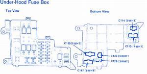 Honda Dx 1988 Under Hood Fuse Box  Block Circuit Breaker Diagram  U00bb Carfusebox