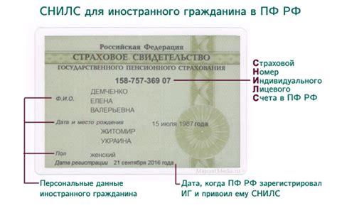 Можно ли гражданину рф иметь двойное гражданство