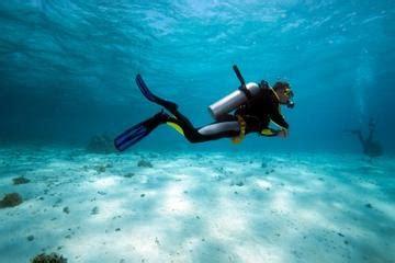 bermuda shore excursions  cruise port
