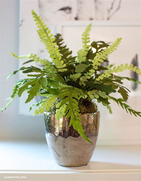 diy double sided crepe paper fern plant  images