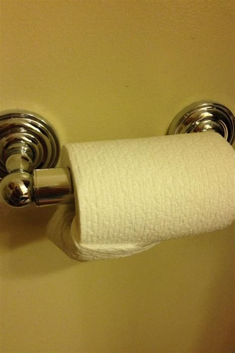 Product Of The Week Easy Load Toilet Paper Holder by How To Keep Your Cat From Unrolling Toilet Paper Pets