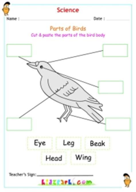 parts  birds