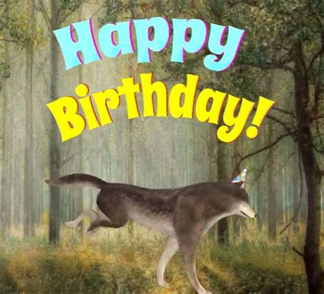 happy birthday wolf  happy birthday ecards greeting cards