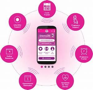 Mobile Baby Test : first response pregnancy pro digital pregnancy test ~ Lizthompson.info Haus und Dekorationen