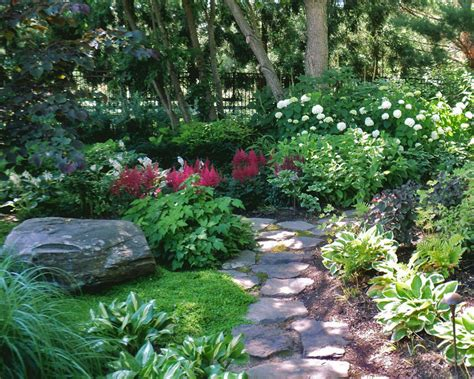 hosta shade garden maple grove i love hostas and shade gardens