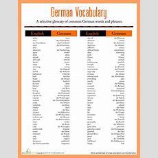 German Vocabulary  Worksheet Educationcom