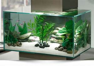 Petit Aquarium Design : nano aquarium l anti kitsch par excellence ~ Melissatoandfro.com Idées de Décoration