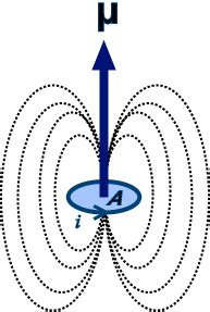 Proton Magnetic Moment by Magnetic Dipole Moment Questions And Answers In Mri