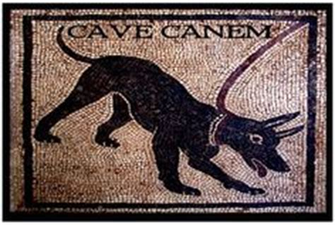 Cave Canem Doormat by 1000 Images About Mudroom Project On